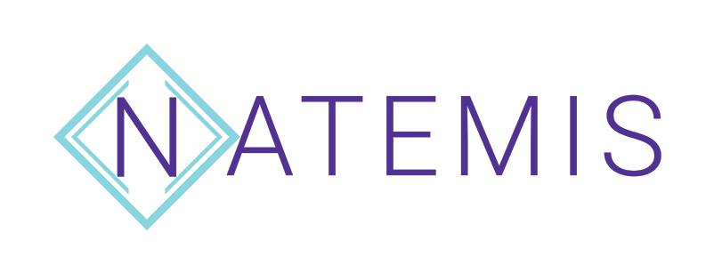 Natemis Agence web Bordeaux – Création de site internet